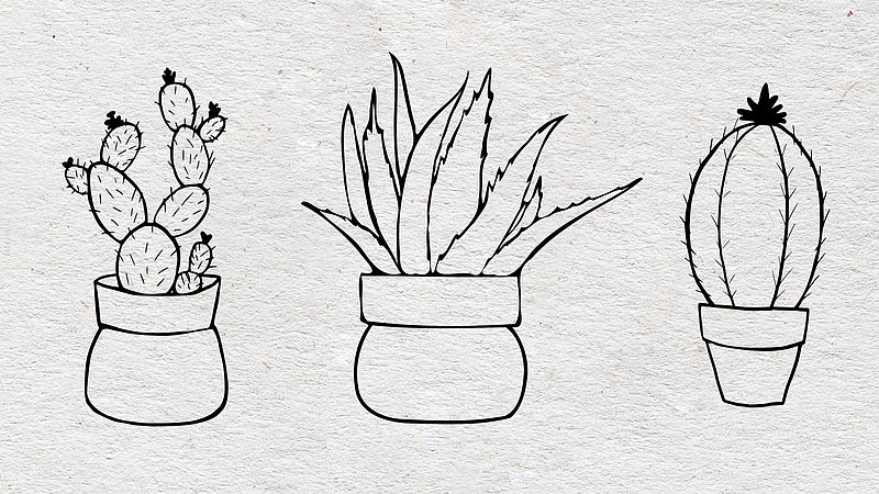 Plant templates - cacti and aloe vera